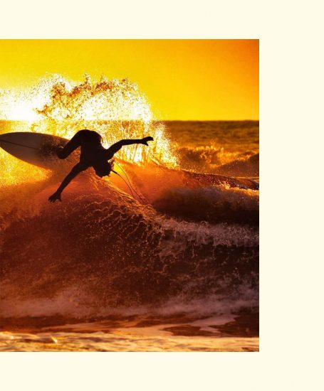 image animation livre surf d