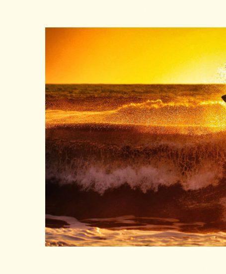 image animation livre surf g
